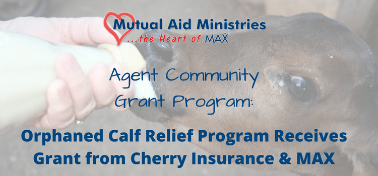 Orphaned Calf Relief Program Receives Grant from Cherry Insurance and MAX Insurance