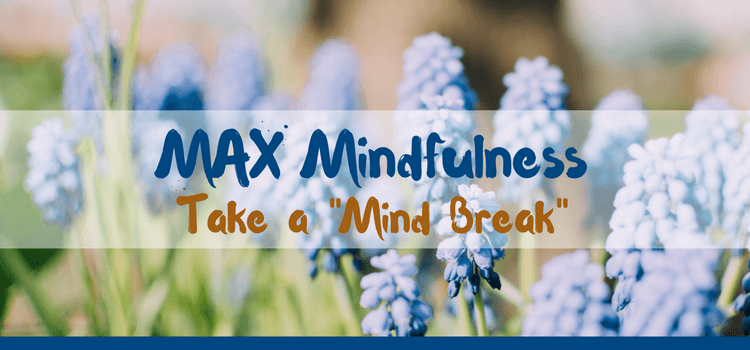 "MAX Mindfulness:  Take a ""Mind Break"""